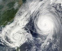 typhoonのイメージ画像